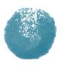 iZotope「Ozone9.0」「Neutron3.1」が起動しない場合の解決方法 – こおろぎさん